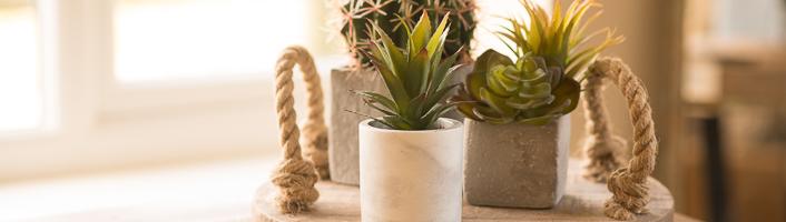 Faux Plants & Flowers