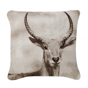 Black And White Antelope Cushion 1